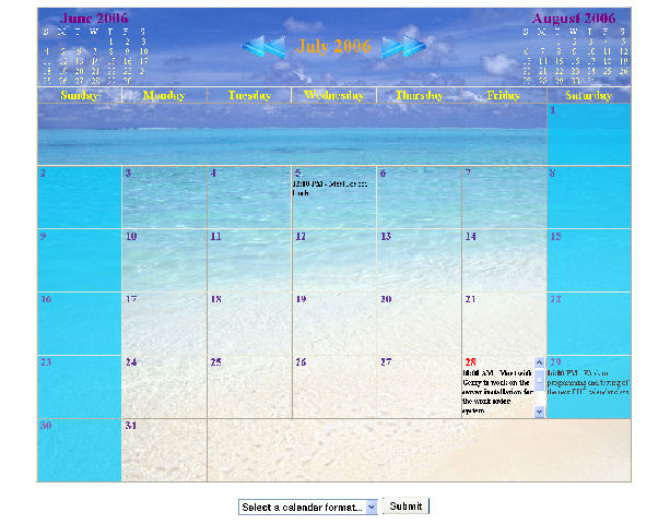 This is a screen shot of the large format calendar