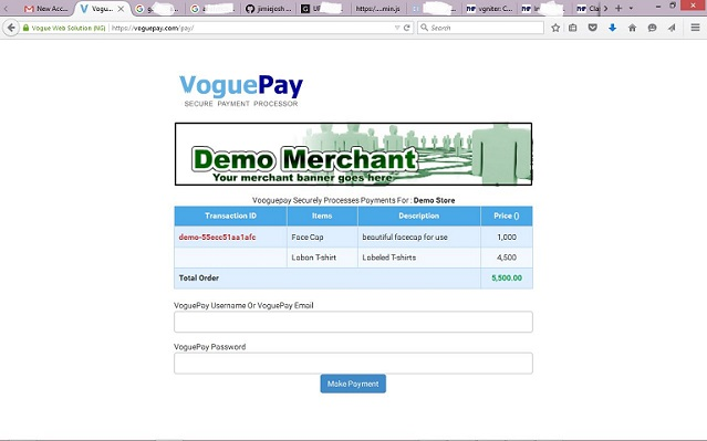 demo Vgniter genrated payment page